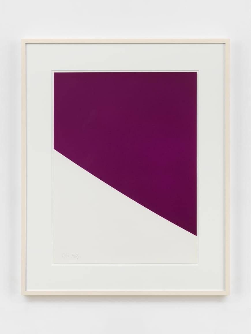 Purple Curve 1999
