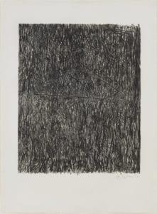 Jasper Johns, Coat Hanger I, 1960, Lithograph